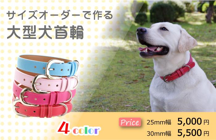 犬 首輪 大型犬