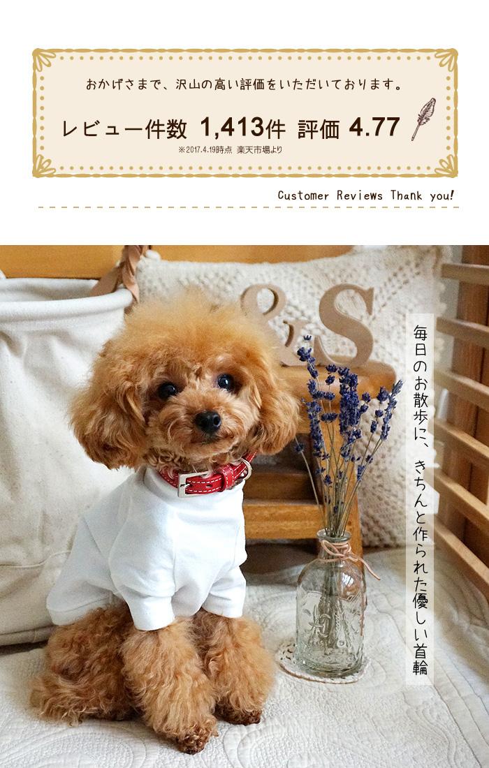 犬首輪 かわいい 本革